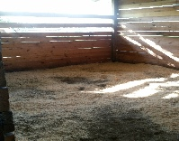 bedded stall